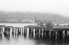 Seagull Pier (naql) Tags: nikonfa nikon50mmf18seriese ilfordfp4 blackandwhite film fog coast kodiakak kodiakisland alaska