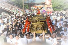 Japanese Matsuri (Festival) (seiji2012) Tags: 成田市 祭り 神輿 成田山新勝寺 narita japan festival event crowd