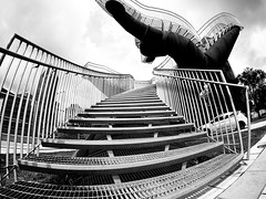 Bonaventure Expressway Park stairs (MassiveKontent) Tags: montreal bw contrast city monochrome urban blackandwhite street photo montréal quebec photography bwphotography streetshot architecture asphalt concrete shadows noiretblanc blancoynegro staircase stepsandstaircases cityscape citylife gopro