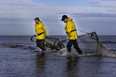 Garnalenkruiers in Nieuwpoort (binnenvaartfotografie.be) Tags: garnaalkruiers nieuwpoort garnalen kust vissers zee schrimps fishermen coast sea water fishing