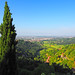 View from San Vigilio hill near Bergamo ... (Rosmarie Wirz) Tags: bergamo sanvigilio landscape cypress italy nature rolling hills