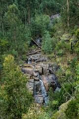 Masons Falls (Rodney Topor) Tags: kinglake landscape masonsfalls victoria waterfall xt2 xf23mmf2 forest