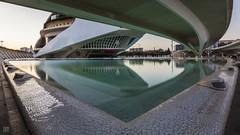 Curves - Ciutat de les Arts i les Ciències (lycheng99) Tags: spain cityofartsandsciences ciutatdelesartsilesciències ciudaddelasartesylasciencias reflections architecture architecturaldesign curves shape buildings valencia
