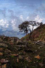 IMGP2129 (Alex Ravin) Tags: nepal himalaya himalayas annapurna dhaulagiri trekking landscape fishtale machhapuchre hiking