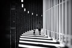 Walking the dog (michael_hamburg69) Tags: hamburg germany deutschland hansestadt lines curves monochrome amalsterfleet ziegel arkadengang säulen brickstones man dog walkingthedog hund herrchen spaziergang walk pillar shadow light