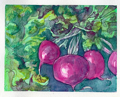 Radish -Van Gogh Watercolor on Hahnemühle Expression (molossus, who says Life Imitates Doodles) Tags: watercolor review giveaway vangogh royaltalens worldwatercolormonth
