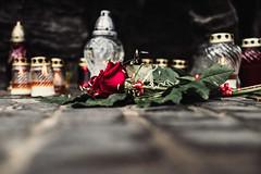 memorial (ewitsoe) Tags: canoneos6dii ewitsoe polska street uprising warszawa erikwitsoe ewi poland urban warsaw memorial flowers candles alter death memory