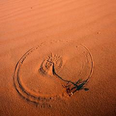 89740 Wind Circle (wild prairie man) Tags: sand dune circle plant wind square crop warm eveninglight sunsetlight simple graphic detail ripples wild prairie monahanssandhillsstatepark texas unitedstates usa film scan fujichrome velvia iso50 2001 copyrighted jamesrpage
