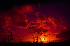 pôr-do-sol (gabii.parejo) Tags: sunset pôrdosol céu lightroom