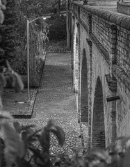 Puente El Humilladero (José M. Arboleda) Tags: monocromático blancoynegro puente elhumilladero arco empedrado ladrillo camino carretera calle salidadelsol amanecer nube cielo árbol arquitectura ciudad parque popayán colombia canon eos 5d markiv ef70200mmf4lisusm14x josémarboledac