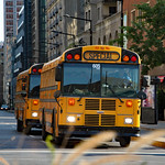 Special school buses thumbnail