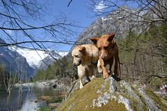 Dea e Luigi foto di Giusi Cipriano