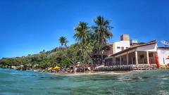 Rio Grande do Norte - PIPA (sileneandrade10) Tags: sileneandrade pipa tibaudosul riograndedonorte viagem turismo praia sony