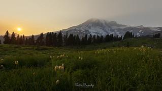 Sunset at Paradise. (Mt Rainier NP, Paradise, WA)