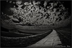 Towards The Clouds... (SHADOWY HEAVEN) Tags: 1708057ha0233 tokyocameraclub igers igersjp phosjapan picsjp 日本 北海道 ファインダー越しの私の世界 写真好きな人と繋がりたい 写真撮ってる人と繋がりたい 写真の奏でる私の世界 モノクロ モノクローム モノクロ写真 白黒写真 空 雲 coregraphy japan hokkaido monochrome mono monotone blackandwhite bw bnw blackwhite noiretblanc japaninbw outdoor landscape paysage cloud clouds sky モエレ沼公園 イサムノグチ 札幌 sapporo moerenumapark isamunoguchi 魚眼 fisheye