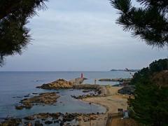 Lighthouse (ifaw_yc) Tags: korea southkorea lighthouse pinetrees horizon eastsea sea ocean harbor beach rocks country landscape sky shore travel path trail