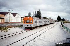 3566 ADL801 ADC851 ADL805 ADC855 South Terrace South Fremantle 27 March 1983 (RailWA) Tags: philmelling railwa adl801 adc851 adl805 adc855 westrail 1983 southfremantle