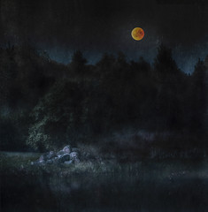 Bad Moon Rising (andredekok) Tags: bloodmoon eclips landscape night darkness textures sony a7rm2