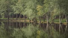 Southern Beauty (TuthFaree) Tags: pond tranquil peaceful ga georgia swga fishinghole green