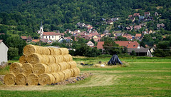 Griesbach-au-Val (Philippe Haumesser Photographies (+ 6000 000 view)) Tags: paysages landscape landscapes field arbres tree trees forêt forêts forest forests village église church prairie meadow 169 griesbachauval vosges alsace elsass france hautrhin 68 sonyilce6000 sonyalpha6000 sony 2018 ballots bales