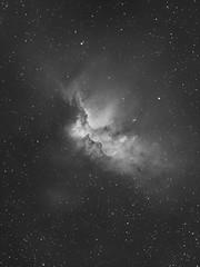 Wizard Nebula,  ngc 7380 stacked 13 x 600 ha QSI 583ws, Astrodon ha 5nm filter Skywatcher Pro 120mm (saundersfay) Tags: wizard nebula ngc7380 cepheus qsi starlight xpress astro stars milkyway ic1396elephanttrunknebula startrails m31greatandromedagalaxy comet21ppassingm35andngc2158 galaxy nebulae
