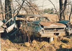 A VERY JUNK 1959 CADILLAC IN NOV 1986 (richie 59) Tags: newyorkstate newyork unitedstates autumn trees generalmotors townofsaugertiesny townofsaugerties richie59 america cadillac fall cadillacsedandeville picturescan oldphotograph olddays oldpicture oldphoto film 1986 photoscan 35mmfilm 35mm filmcamera filmphotography photograph photo nov1986 nov281986 maldenny malden oldtime 1959cadillacsedandevile 1959cadillac 1959sedandeville sedandeville 1950scar americancar uscar hudsonvalley midhudsonvalley midhudson ny nys nystate usa us