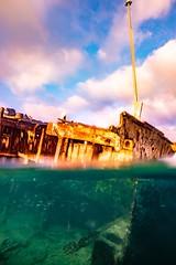 Heron Island Snorkel Underwater-20 (Quick Shot Photos) Tags: aquatechimagingsolutions canon canoncollective heronisland padi queensland scuba underwater snorkel bogie australia au