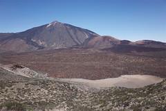 Teide (Riverman___) Tags: tenerife spain hiking mountain volcano teide guajara flower sky tajinaste summit camino de teresme barranco del infierno