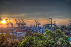Sunrise In San Pedro (Michael F. Nyiri) Tags: knollhill sanpedro vincentthomasbridge morning sunrise colorful