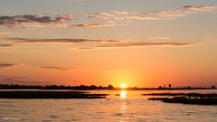 Chobe River Sunset (He Ro.) Tags: 2018 africa afrika botswana chobenp choberiver serondela southernafrica riverfront sunsetboatcruise sunset sonnenuntergang golden goldenlight sun sonne himmel wasser botsuana ngc