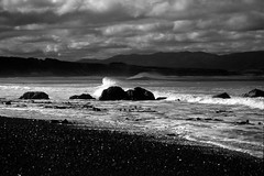 Undertow  (Film) (Harald Philipp) Tags: outdoors rural panorama seascape beach surf waves sand blacksand landscape desolate desolation wind windswept driftwood forest trees natural scenic people bushes dunegrass ocean sea lagoon bay water mountain hill holiday vacation tourism tourist destination travel adventure wanderlust island beautiful romantic mysterious blackandwhite bw monochrome schwarzweiss grauzone nocolor dark shadows contrast kodak ilford ilfordfp4 135 35mm film analog analogue filmphotography day cloud clouds cloudy pacificocean newzealand park nationalpark southpacific