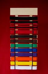 Martial Arts Belt Display (bobbisharp) Tags: kravmaga selfdefenseglobalkansascity selfdefenseglobal martialarts beltdisplay beltrack display woodworker handmade custom wood