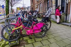 Pink (107/365) (Walimai.photo) Tags: rosa pink street calle candid portrait robado amsterdam holanda nederlands lx5 lumix panasonic bike bici bicicleta bicycle
