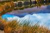 el milagro del agua en el salar de Antofalla (Luis_Garriga) Tags: agua laguna geiser volcán desierto puna catamarca ojo personas milagro sequedad aridez andes cordillera nikon d5200
