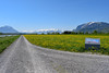 Alpenrheinweg bei Montlingen, Oberriet (gieri.kohler) Tags: alpenrheinweg montlingen oberriet schweizmobil velo fahrrad bike veloland schweiz switzerland mountains wiese grass spring rheinroute