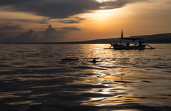 Golden Bali Sea (Monika Kalczuga (on&off)) Tags: balisea bali jukungboat dolphins dolphinwatch sunrise island sea indonesia clouds sky golden reflections water boat lovina nature coastline asia