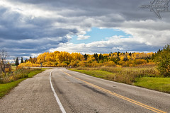 Highway of Gold (Winglet Photography) Tags: wingletphotography georgewidener stockphoto earth sun canon 7d georgerwidener inspiration colors sky nature heclaisland manitoba canada gullharbour provincialpark road highway fall autumn