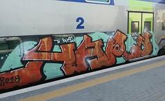 Hard 🔥 #stolenstuff #graffitiblog #check4stolen #flickr4stolen #graffiti #graffititrain #benching #bencher #instagraff #hard #vivalto #writing #trainbombing (stolenstuff) Tags: instagram stolenstuff graffiti graffititrain benching