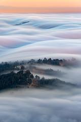 In the Current (dsafanda) Tags: fog marin mttam mounttamalpais bayarea