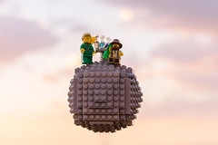 The Little Prince (Guilherme Lima IT) Tags: lego little prince o pequeno principe fox airplane toy pilot planet asteroid king flowers