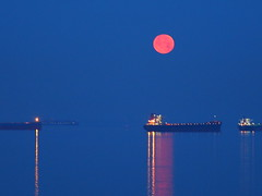 Transpot Ships Under the Full Blood Red Moon (Irene, W. Van. BC) Tags: transportshipsunderthefullbloodredmoon fullredbloodmoon fullmoon moon moonmadness moonlight moonmoods moonshots allmoons redmoon water waterscenes waterreflections red redreflections sky skies allskies skyscenes outdoors outdoorscenes ships transportships july2018fullbloodmoon buckmoon 1001nights 1001nightsmagiccity 1001nightsmagicwindow lunar lunarviews lunarevents lunarscenes morning morningbluehour bluehour