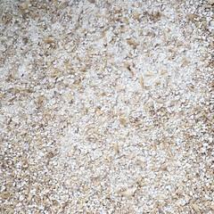 Tilde Festbier (found_drama) Tags: homebrew homebrewing tildegravitywerks tildefestbier festbier lager essexjunction vermont vt 05452