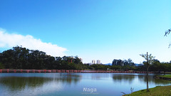 Sunday at the park 。◕‿‿◕。 (Naga;;) Tags: landscaps water hill sunday sky blue green brazil relaxing reflex tree lake wildlife wild naga