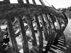shipwreck (chrisinplymouth) Tags: boat ship derelict shipwreck wooden beams hulk hooe plymstock plymouth devon england city uk cw69x vessel hooelake radfordpark rotting abandoned wreck 2017 old