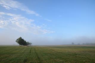 Petite brume d'un matin d'été