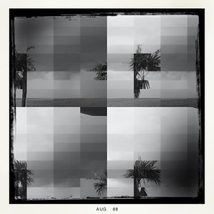 Abstract Palms (GR167) Tags: four iphoneography iphoneart 8plus iphone artistic hipstamatic blackandwhite abstract