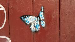 N20... (colourourcity) Tags: melbourne burncity colourourcity awesome nofilters original streetart streetartaustralia streetartnow graffiti n20 stencilart stencils