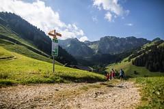 La Gruyère - Charmey / Ref.02288 (FRIBOURG REGION) Tags: fribourgregion fribourgrégion charmey lagruyère été sommer summer préalpes voralpen prealps randonnée wandern hiking famille familie family prédelessert suisse schweiz