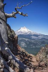 Lookout Mountain (Joshua Johnston Photography) Tags: oregon pacificnorthwest pnw joshuajohnston sonya7ii samyangaf35mmf28 mthood mthoodnationalforest landscapephotography volcano trees