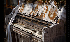 All Dressed Up and Nowhere to Go (Whitney Lake) Tags: missouri stlouis piano decay